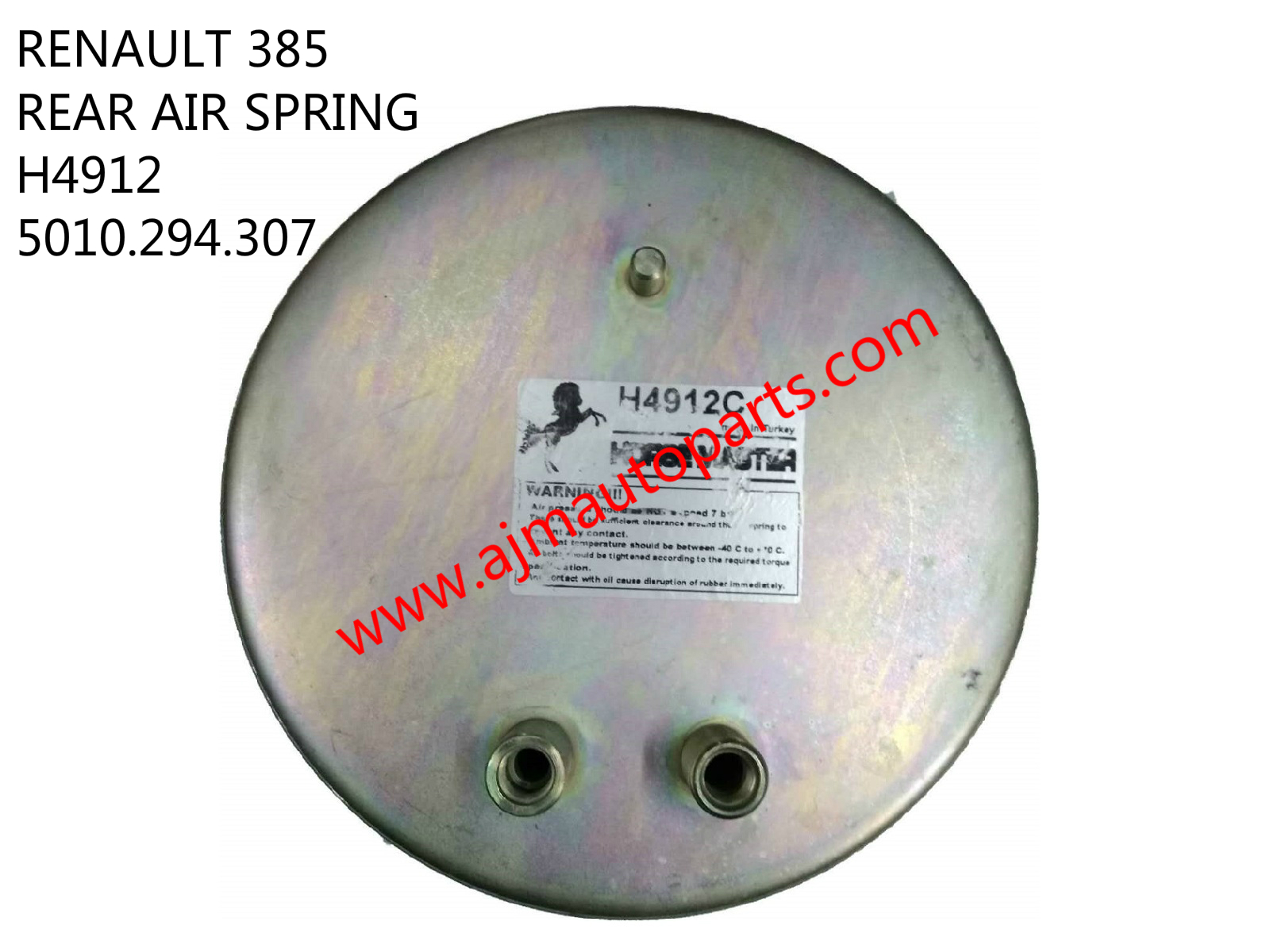 RENAULT REAR AIR SPRING-H4912 5010.294.307